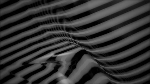 zebra texture background Animation