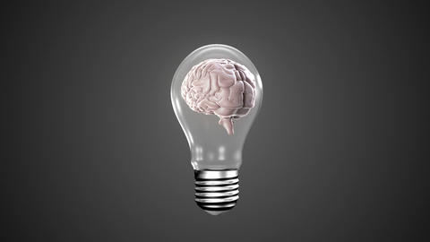 Light bulb with revolving brain Animation