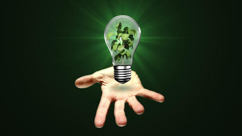 Hand presenting light bulb with plant Animation