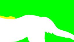 HORSES Animation