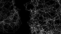 Plexus V 6 double Sites Animation