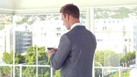 Rear view of businessman using smartphone Live Action