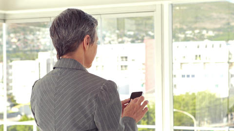 Rear view of businesswoman using her smartphone Live Action