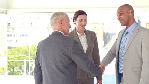 Business people shaking hands and smiling Footage