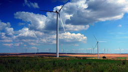 Wind Turbines, Field With Strong Colors, Static Shot Footage