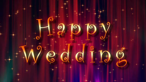Happy Wedding Image stock footage