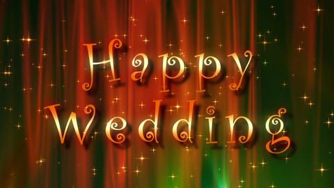 Happy wedding image Stock Video Footage