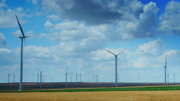 Wind Turbines In A Wheat Field, Time Lapse, Static Shot Footage