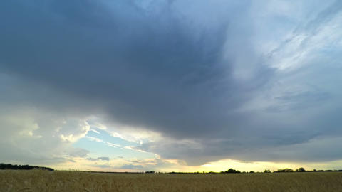 Sunset Sky over a Wheat Field Footage