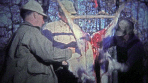 TENNESSEE, USA - 1952: Deer hunters clean and skin the kill out in the forest Footage