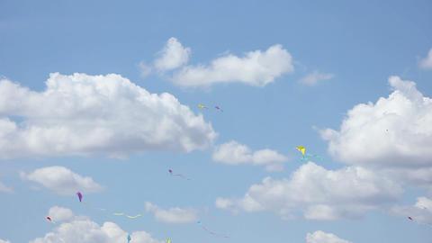 Kite 01 Stock Video Footage