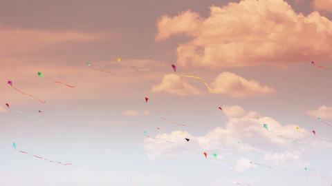 Kite 02b Stock Video Footage