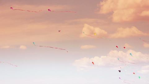 Kite 04b Stock Video Footage
