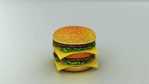 burger Stock Video Footage