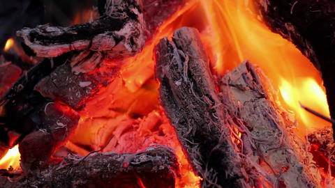 Flame in campfire Stock Video Footage