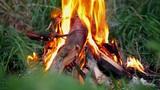 Bonfire Footage
