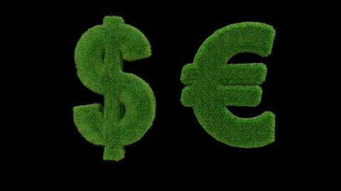 USD EUR grass loop Stock Video Footage