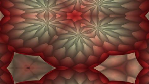 FlowerMotif4a Stock Video Footage