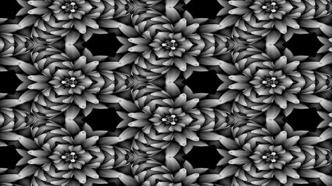 FlowerMotif13a Stock Video Footage