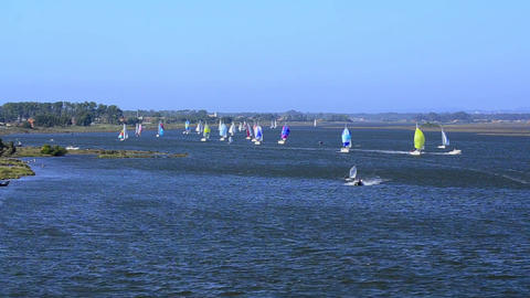 Sailboats in regatta Stock Video Footage