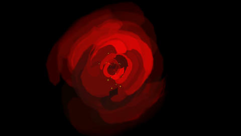 rose opening time lapse with smooth rotation.lover,Valentine's Day,plants,flowers,youth,friendship,a Animation