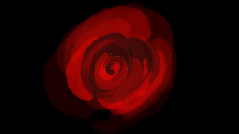 rose opening time lapse with smooth... Stock Video Footage