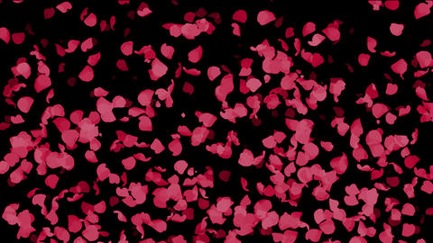 falling red flower petals and leaves,Valentine's Day Animation