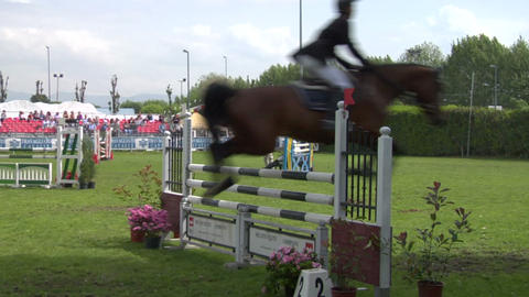 horse race jump 24 Stock Video Footage
