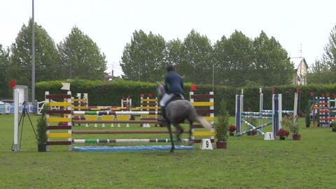 horse race jump 93 Stock Video Footage