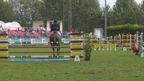 horse race jump 97 Stock Video Footage