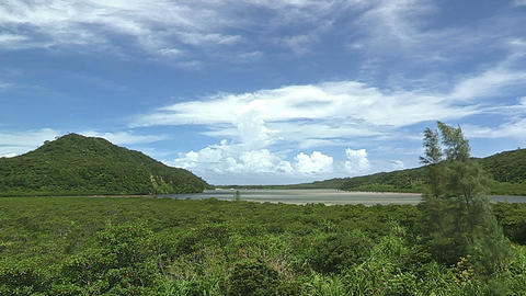 Summer Landscape in Iriomote Island,Okinawa,Japan_4 Stock Video Footage