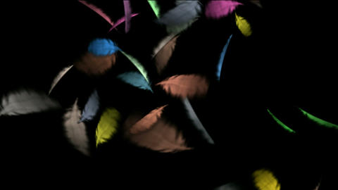 floating color feather.pollution,leaves,cotton,catkins,confusion,birdflu,material,texture,Dust,parti Animation