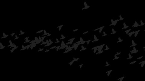 Group of bird flying.romantic,material,texture,particle,Design,pattern,decorative,mind,Game,Led,neon Animation