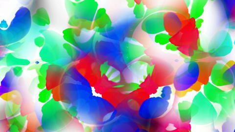 abstract flower petal and butterfly Animation