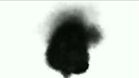 Black smoke in white background,seamless loop,def.particle,material,flame,symbol,vision,idea,death,v Animation