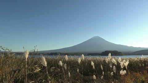 Autumn Landscape in Kawaguchi Lake and... Stock Video Footage