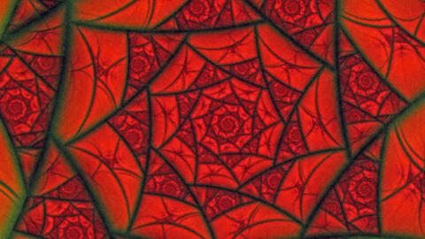 Lovers Red Spider Web Flower Pattern Animation Background stock footage