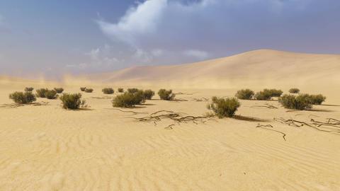 Desert Landscape. Time Lapse stock footage
