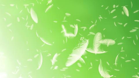 Feather 3 tornado Cg 4 K CG動画