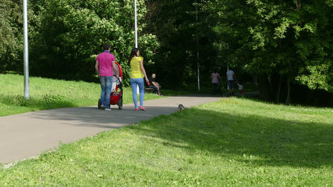 Family with stroller (back) walking in the park summer UHD Footage
