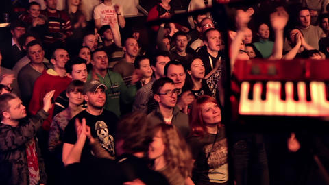Audience Dancing and Clapping at Rock Concert Footage