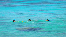 Snorkeling kids in turquoise lagoon Footage