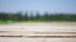 Empty Wooden Pier In Blur stock footage