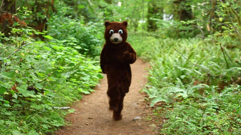 Funny Bear Tackled In The Woods stock footage