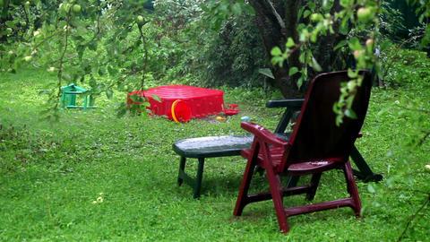 Raining In The Garden stock footage