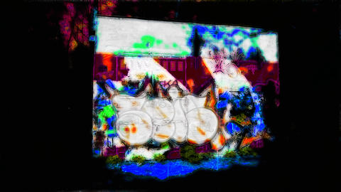 Graffiti In Forest_4 stock footage