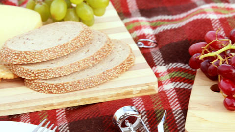 Overview Of Tasty Food On The Picnic Blanket stock footage