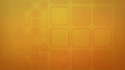 4K camel orange background Animation
