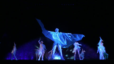 Theatrical performance on the ice Footage