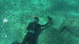 Diver with camera shooting sea turtle Footage